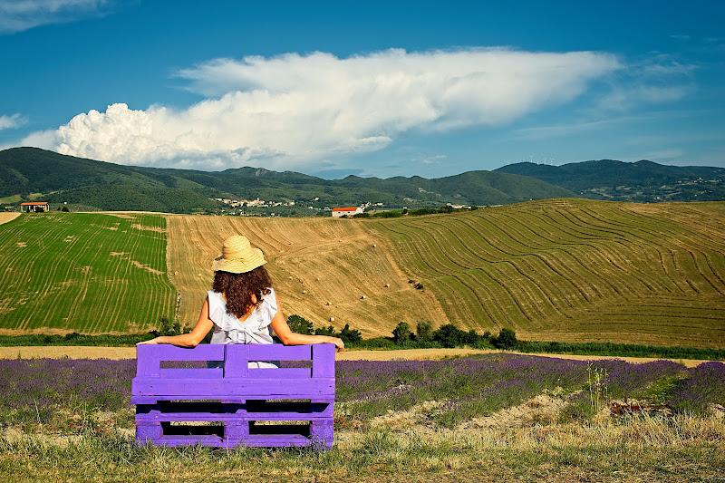 Vacanze in campagna di Dariagufo