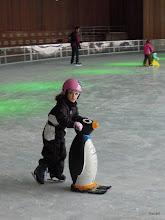 Photo: Pingu