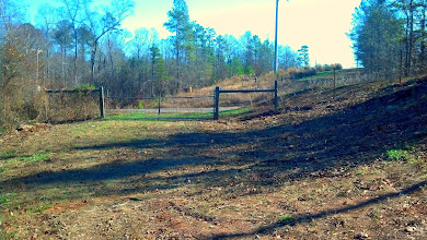 Photo: Access gate to rear of the property. All trails are big enough to drive and lead to the creek surrounded by hardwoods.