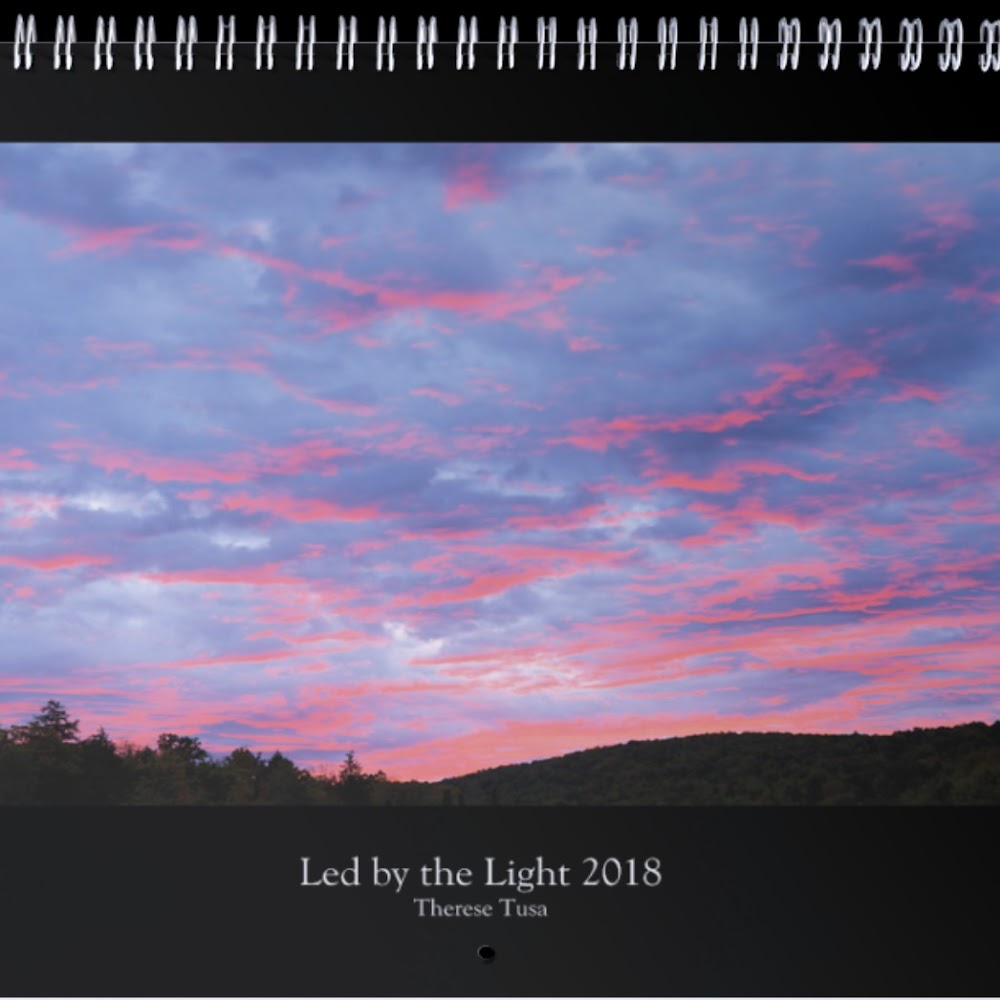 Led by the Light 2018