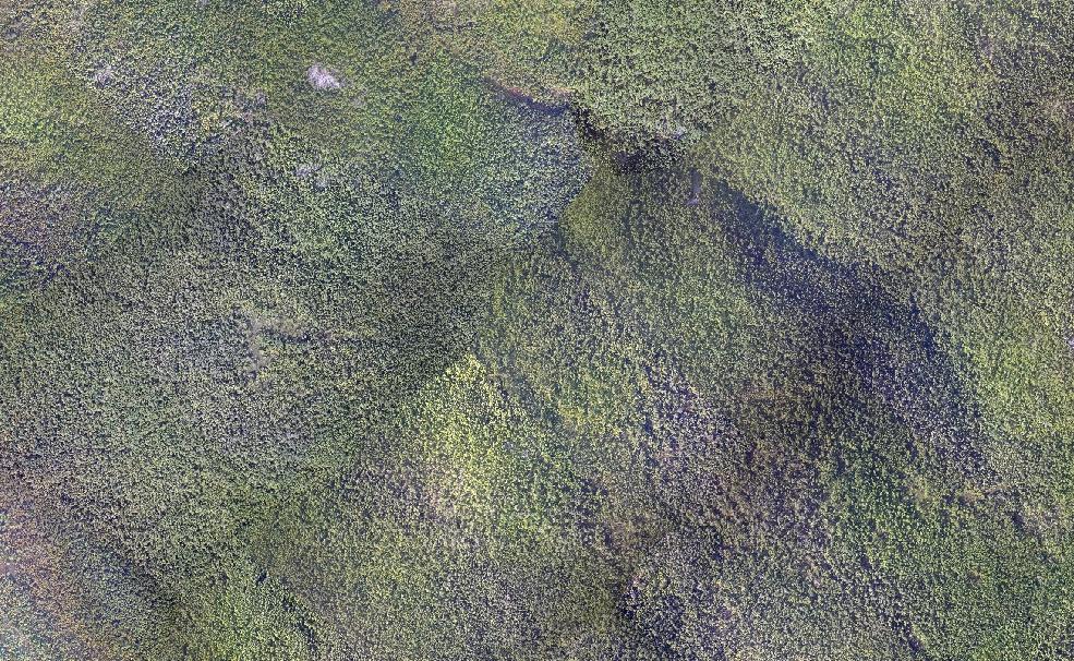 Фрагмент аэрофотосъемки