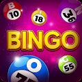 Bingo - Offline Casino Games