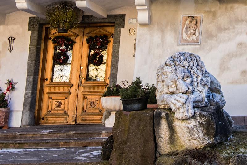 Attenti al .... leone di Fiore Doncovio