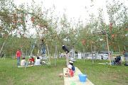 Photo: 黒内果樹園 (c)飛騨市