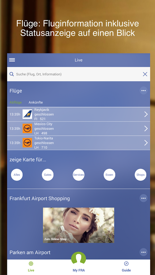 Frankfurt Airport – Screenshot