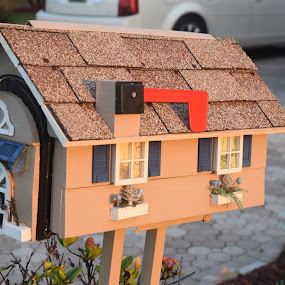 Florida Mailbox by Keith Heinly - Artistic Objects Other Objects ( brevard, indialantic, florida, house, mailbox )