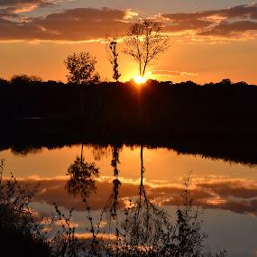 Magic sunset by Vanja Vidaković - Novices Only Landscapes ( vukovar, reflection, sunset, croatia, trees )