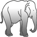 Elephant Dick icon