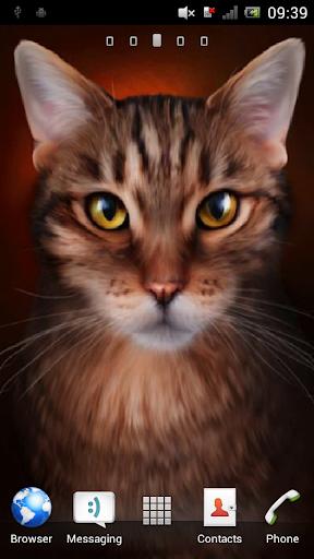 Tabby cat Live Wallpaper