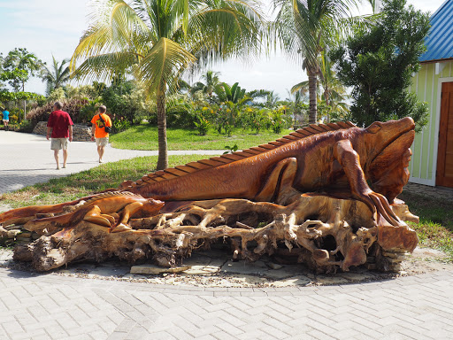 PB180394.JPG - This iguana was carved out of a old tree stump.