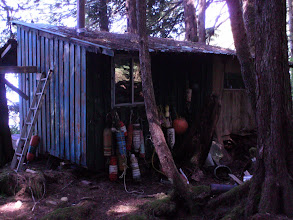Photo: A cabin in the woods.