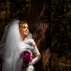 Wedding photographer Elena Svistunova (lisenoklll). Photo of 14.09.2016