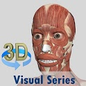 Visual Muscles 3D icon