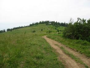 Photo: 08.Na wprost Gorc Kamienicki (1160 m).