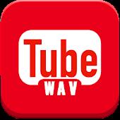 WAV Video Converter