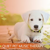 Quiet Pet Music Therapy: Songs for Your Dog, Cat or Other Home Pet, Gentle Animal Healing, Calming Sleep Lullaby, Peaceful & Happy Pets without Anxiety