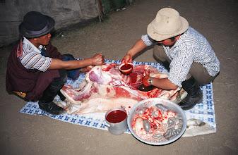 Photo: 03393 ブルド/ハスバター家/羊の解体