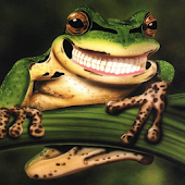 Funny Frogs Jigsaw Puzzles