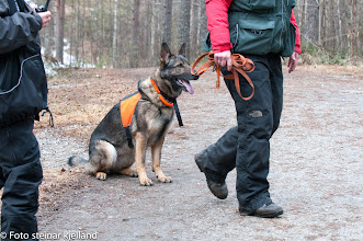 Photo: Ariens Zara og Inger Lise runderer
