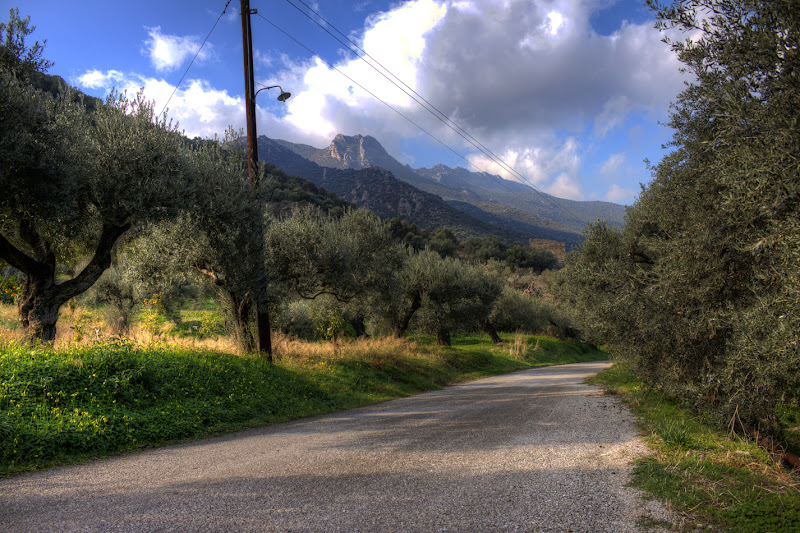 Photo: Hike on a lone road that leads to the mountains in Trizina, Greece.