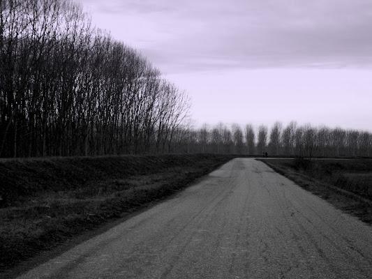 Dove ci conduce la strada? di Furlissima