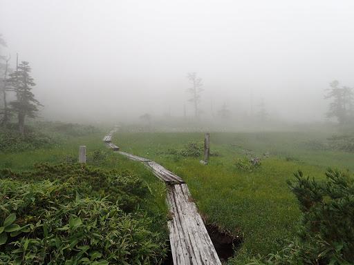 霧に霞んで良い雰囲気