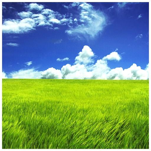 自然的幸福生活壁纸 生活 App LOGO-APP試玩