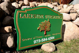 Photo: Wood Signs in Minnesota & more carved signs at http://www.nicecarvings.com