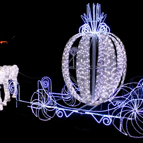 Carriage of Light  by Anthony Rutter - Novices Only Street & Candid
