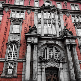 POPPING BLACK by Michael Rey - Buildings & Architecture Public & Historical ( hamburg, architectural detail, germany, historic building, landmark )