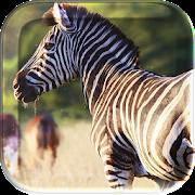 African Animals Live Wallpaper