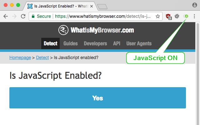 Disable JavaScript