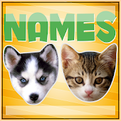 Names For Cats And Dogs