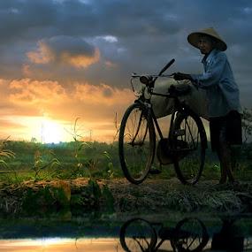 by 3 Joko - Transportation Bicycles ( person, bike, sunset, man )