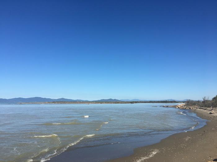La foce del fiume Ombrone