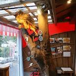 Ninja cafe Fuma in Gora in Hakone, Kanagawa, Japan