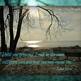 Isaiah 46:4 by Robert George - Typography Quotes & Sentences (  )