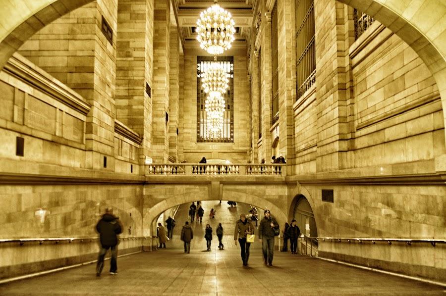 by Stevenson Martin - Buildings & Architecture Public & Historical ( grand central, path )