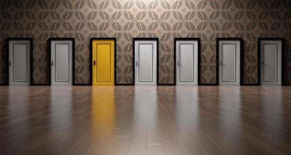 варианты дверей