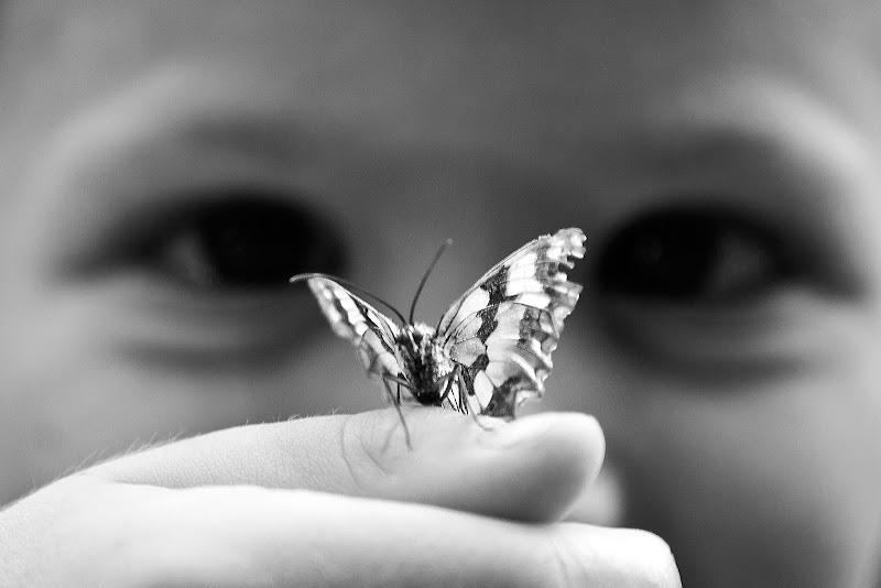 il bambino e la farfalla di faranfaluca