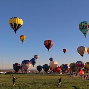Hot Air Balloon Festival by Maureen Rueffer - Uncategorized All Uncategorized ( colors, festival, fun, transportation, balloons,  )
