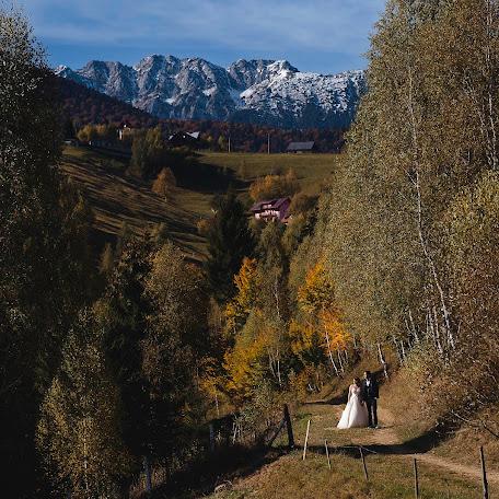 Wedding photographer Sergiu Nedelea (photolight). Photo of 01.11.2017