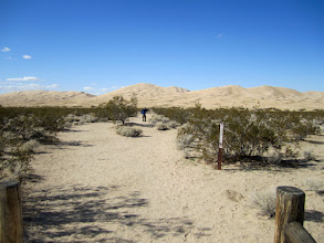 Photo: The Kelso Dunes trail entrance. I'm ready to start the day's adventure.