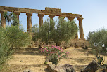 Temple d'Hera