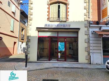 locaux professionels à Villemur-sur-Tarn (31)
