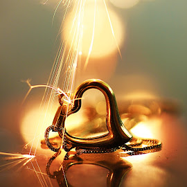 gold on fire by Santy Uriarte - Artistic Objects Jewelry (  )