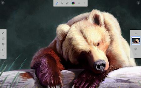 Painter Mobile 2.1.3 screenshot 642080