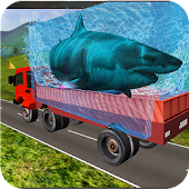 Transport Truck Shark Aquarium