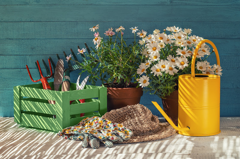 Gardening di wallyci
