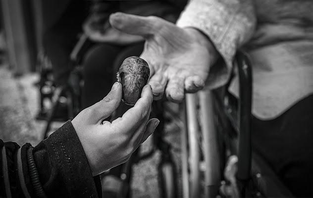 Una castagna per la nonna. di brunosma